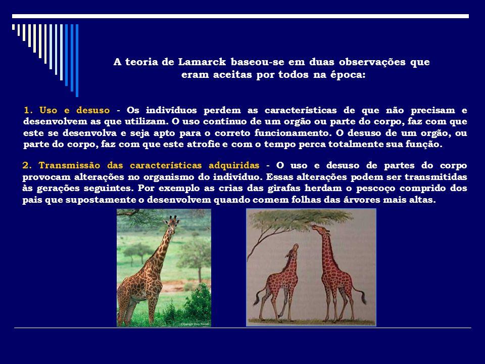 A teoria de Lamarck baseou-se em duas observações que