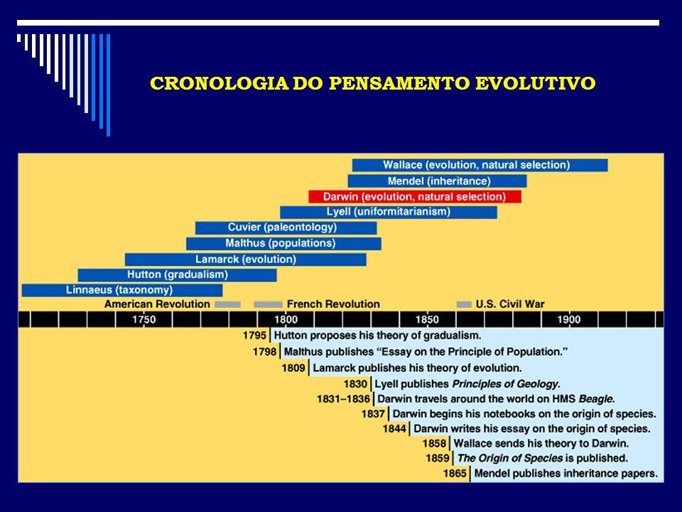 CRONOLOGIA DO PENSAMENTO EVOLUTIVO