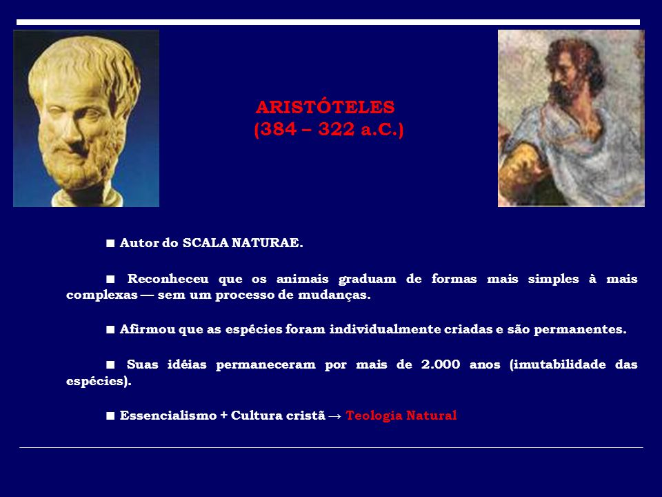 ARISTÓTELES (384 – 322 a.C.) ■ Autor do SCALA NATURAE.