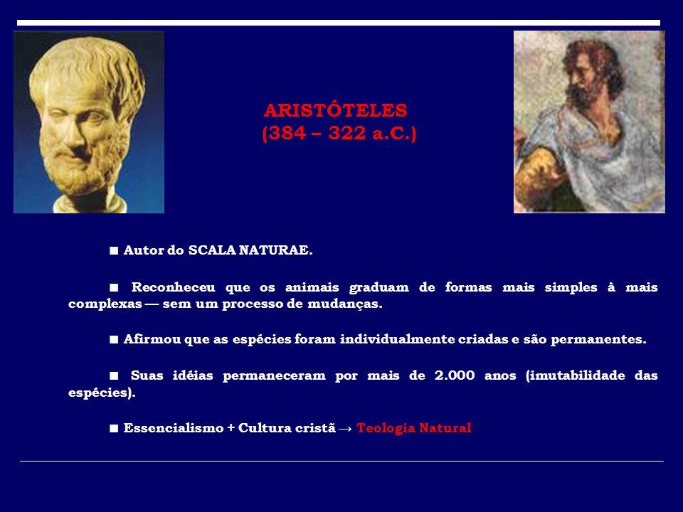 ARISTÓTELES (384 – 322 a.C.) ■ Autor do SCALA NATURAE.