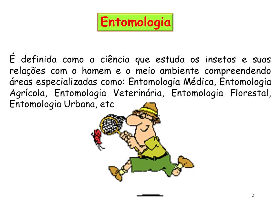 Entomologia