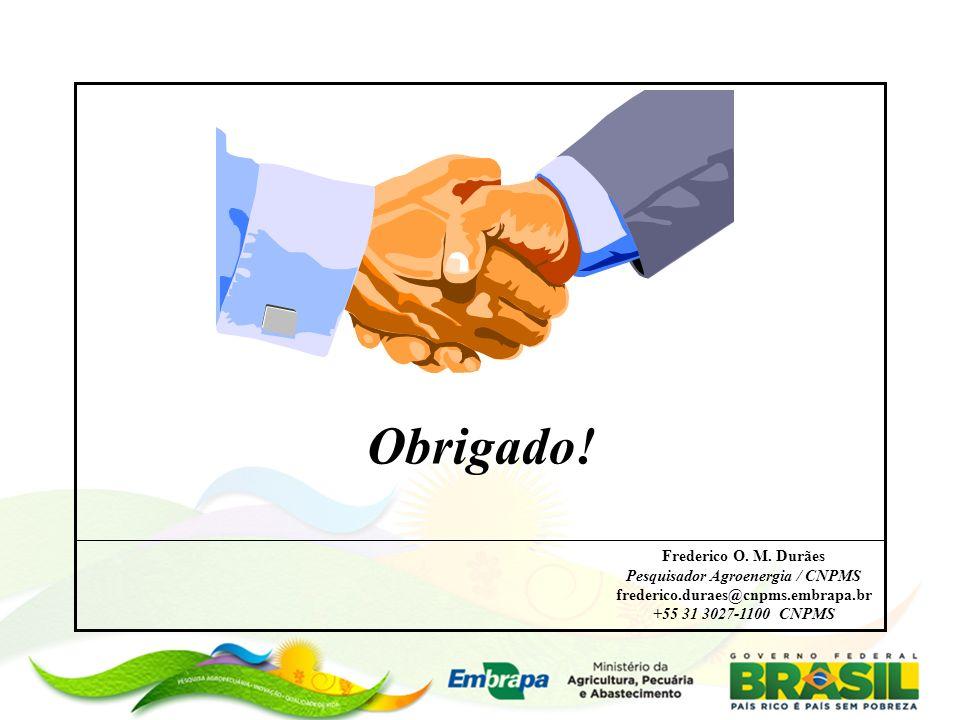 Pesquisador Agroenergia / CNPMS