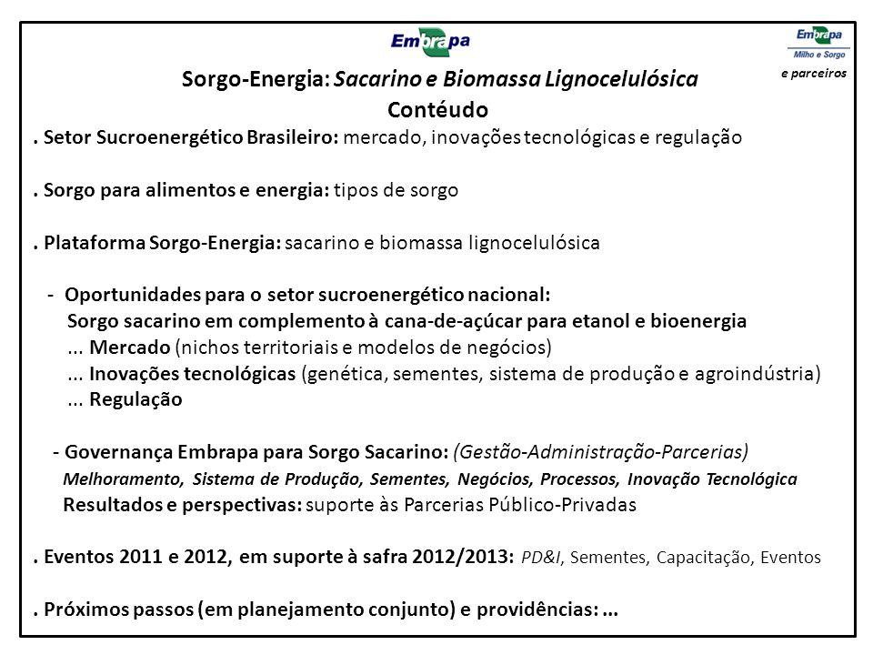 Sorgo-Energia: Sacarino e Biomassa Lignocelulósica