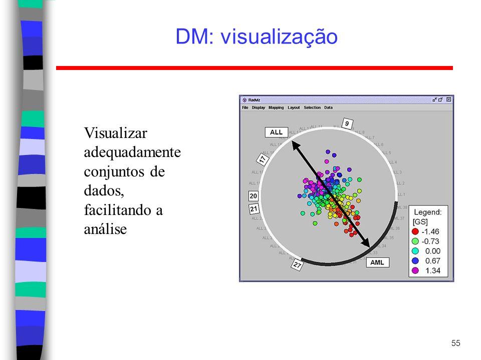 DM: visualização Visualizar adequadamente conjuntos de dados, facilitando a análise
