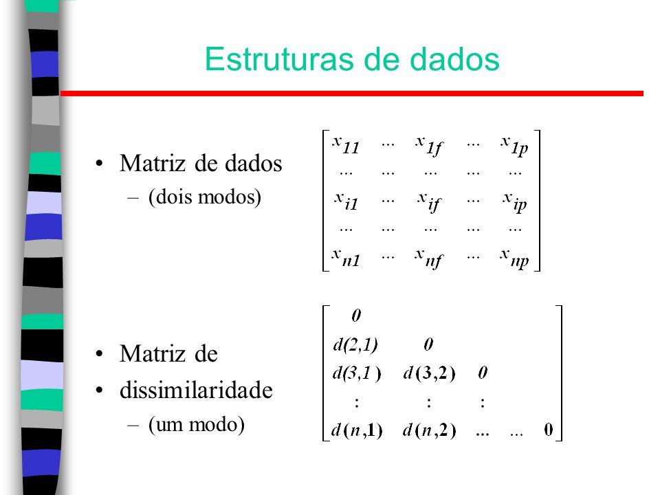 Estruturas de dados Matriz de dados Matriz de dissimilaridade
