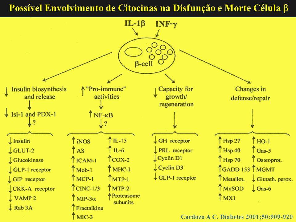 Possível Envolvimento de Citocinas na Disfunção e Morte Célula 