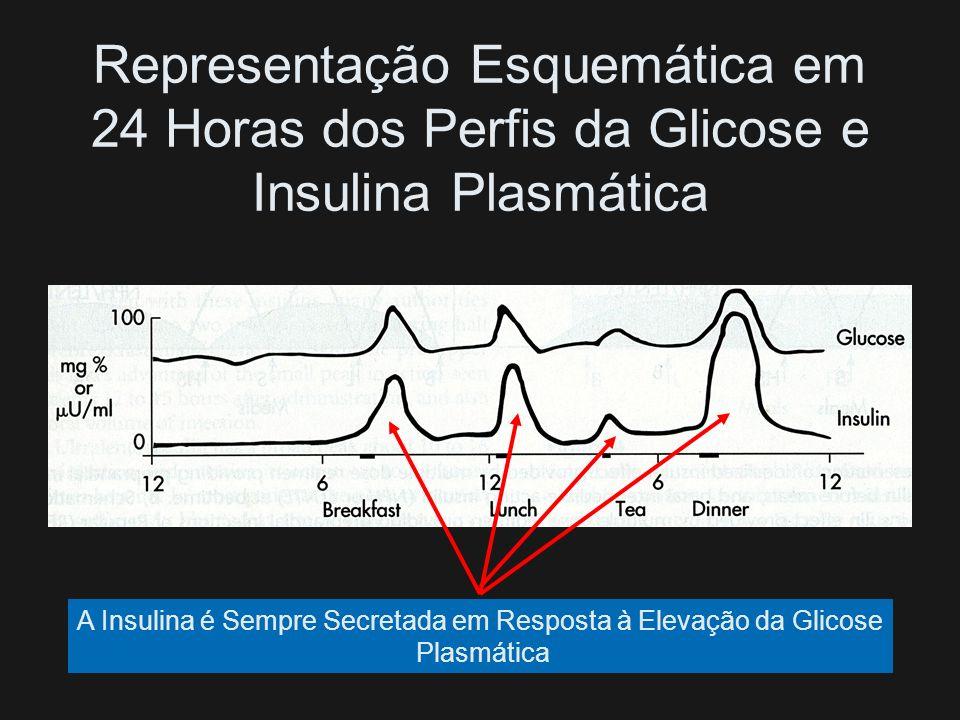 A Insulina é Sempre Secretada em Resposta à Elevação da Glicose