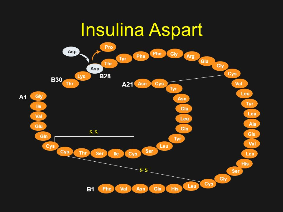 Insulina AspartAsp. Pro. Phe. Gly. Phe. Arg. Tyr. Glu. Thr. Gly. Pro. B28. Cys. Lys. B30. Thr. A21.