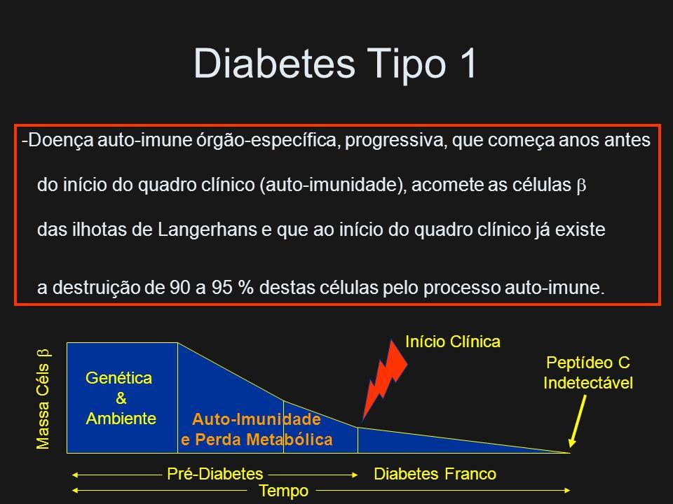 Diabetes Tipo 1 Doença auto-imune órgão-específica, progressiva, que começa anos antes.