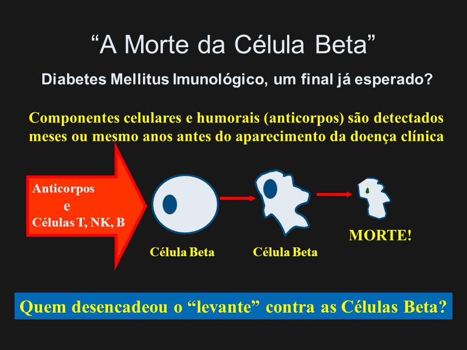 A Morte da Célula Beta Diabetes Mellitus Imunológico, um final já esperado
