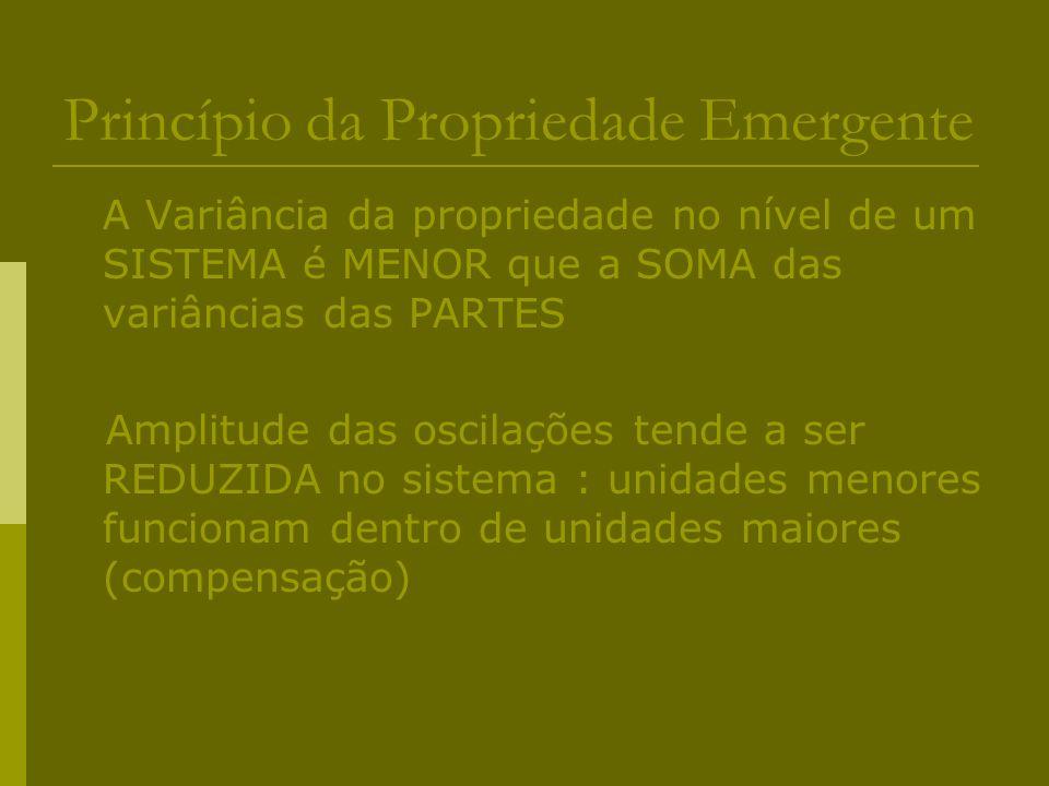 Princípio da Propriedade Emergente