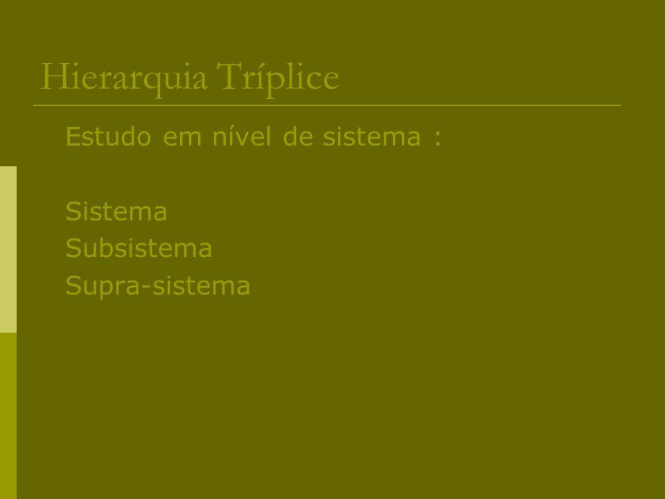 Hierarquia Tríplice Estudo em nível de sistema : Sistema Subsistema
