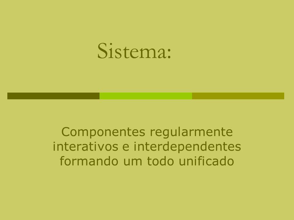 Sistema: Componentes regularmente interativos e interdependentes formando um todo unificado