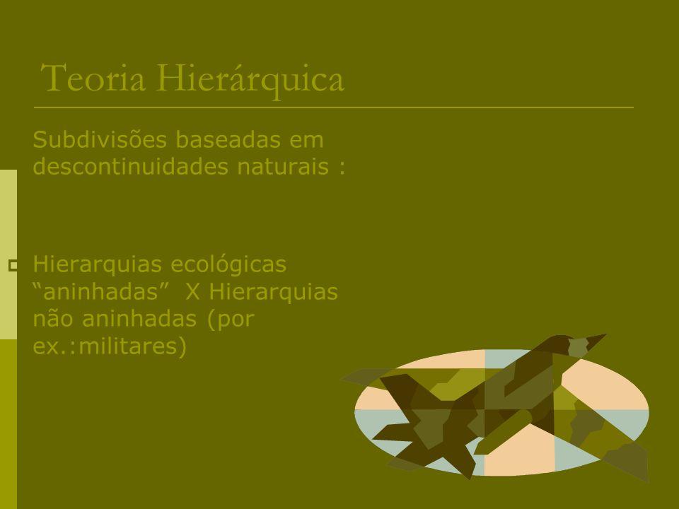 Teoria Hierárquica Subdivisões baseadas em descontinuidades naturais :