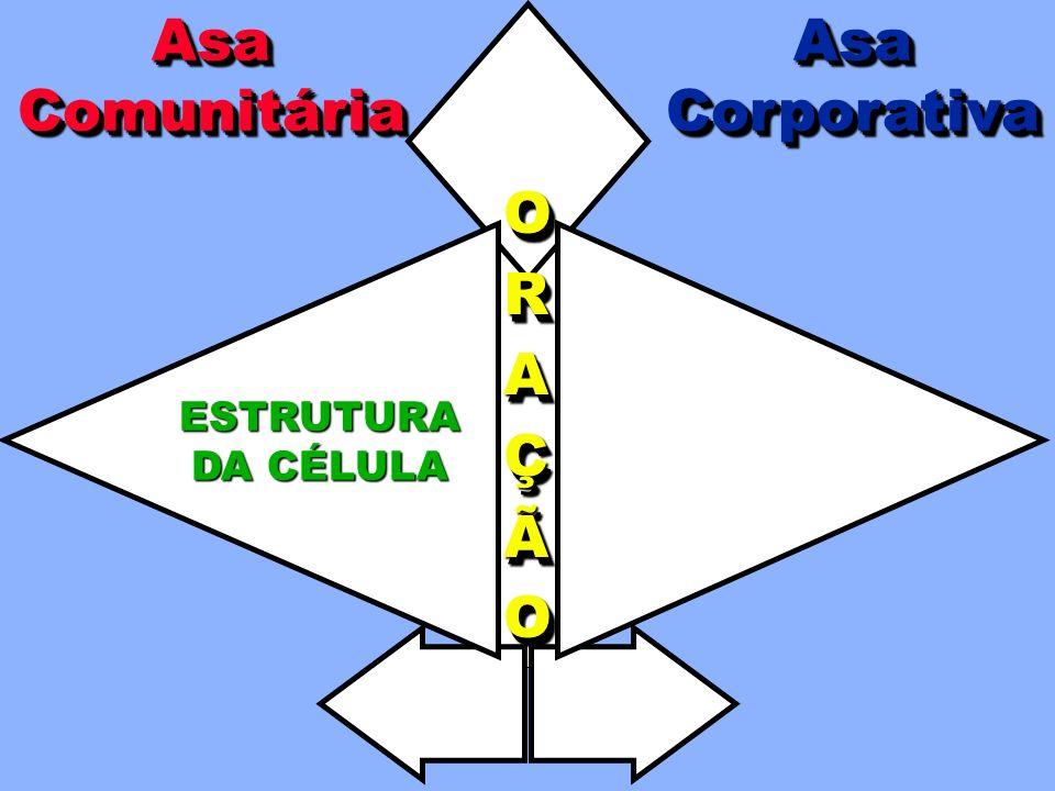 Asa Comunitária Asa Corporativa O R A Ç Ã ESTRUTURA DA CÉLULA