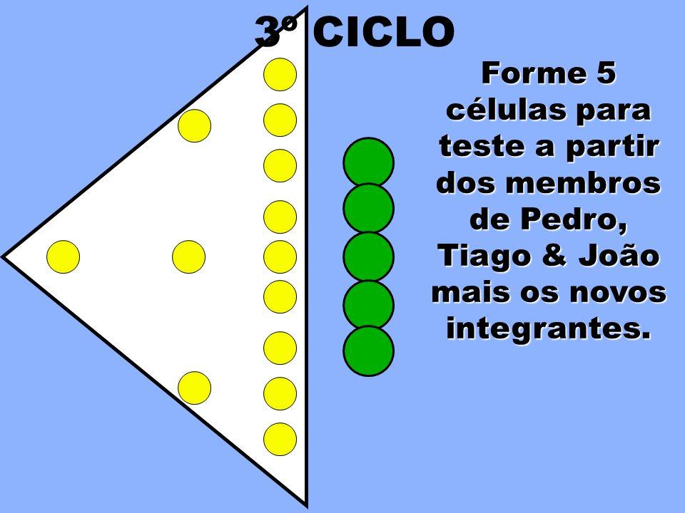 3º CICLO Forme 5 células para teste a partir dos membros de Pedro, Tiago & João mais os novos integrantes.