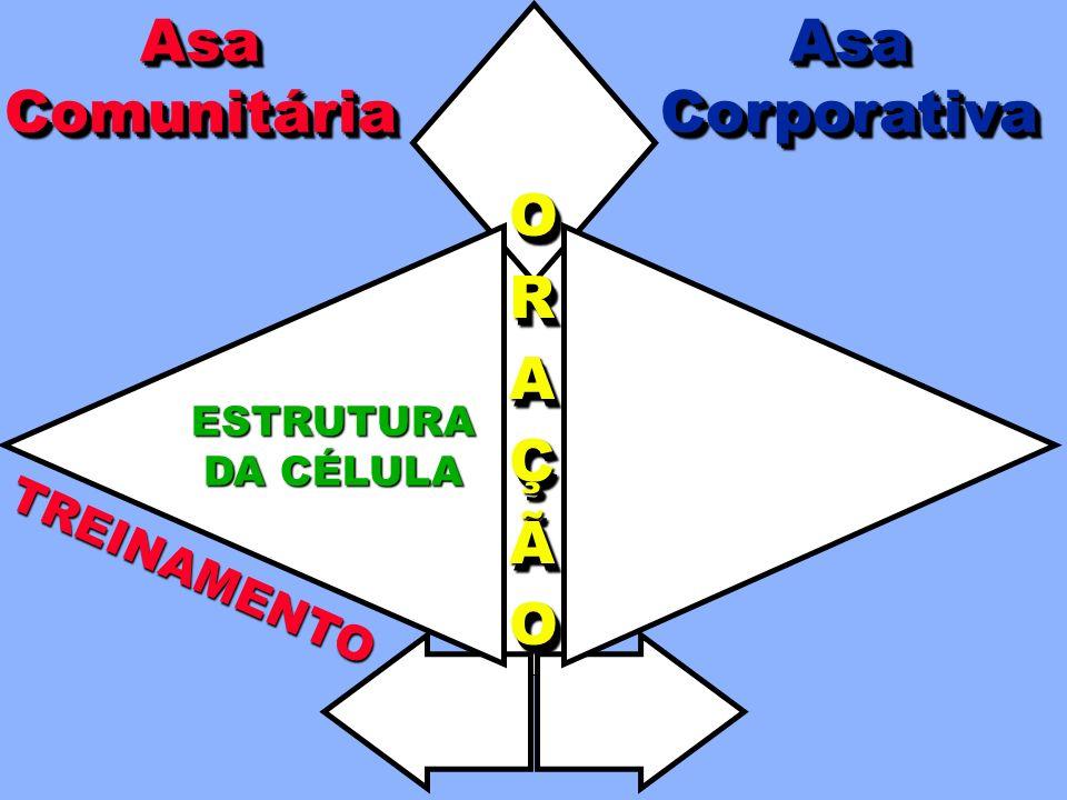 Asa Comunitária Asa Corporativa O R A Ç Ã TREINAMENTO