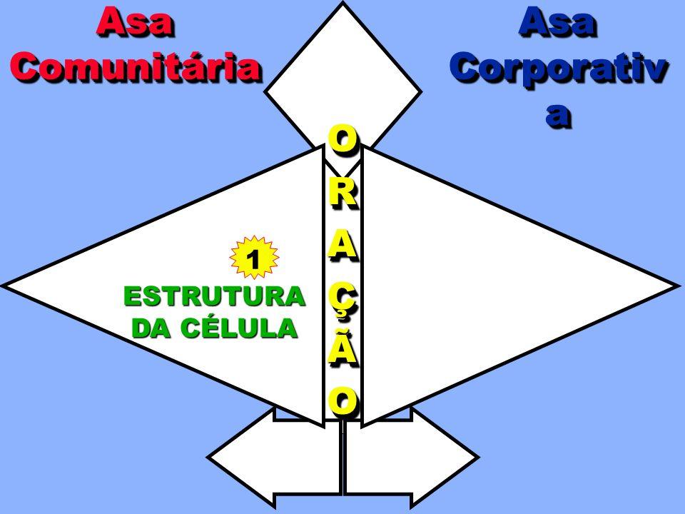 Asa Comunitária Asa Corporativa O R A Ç Ã 1 ESTRUTURA DA CÉLULA