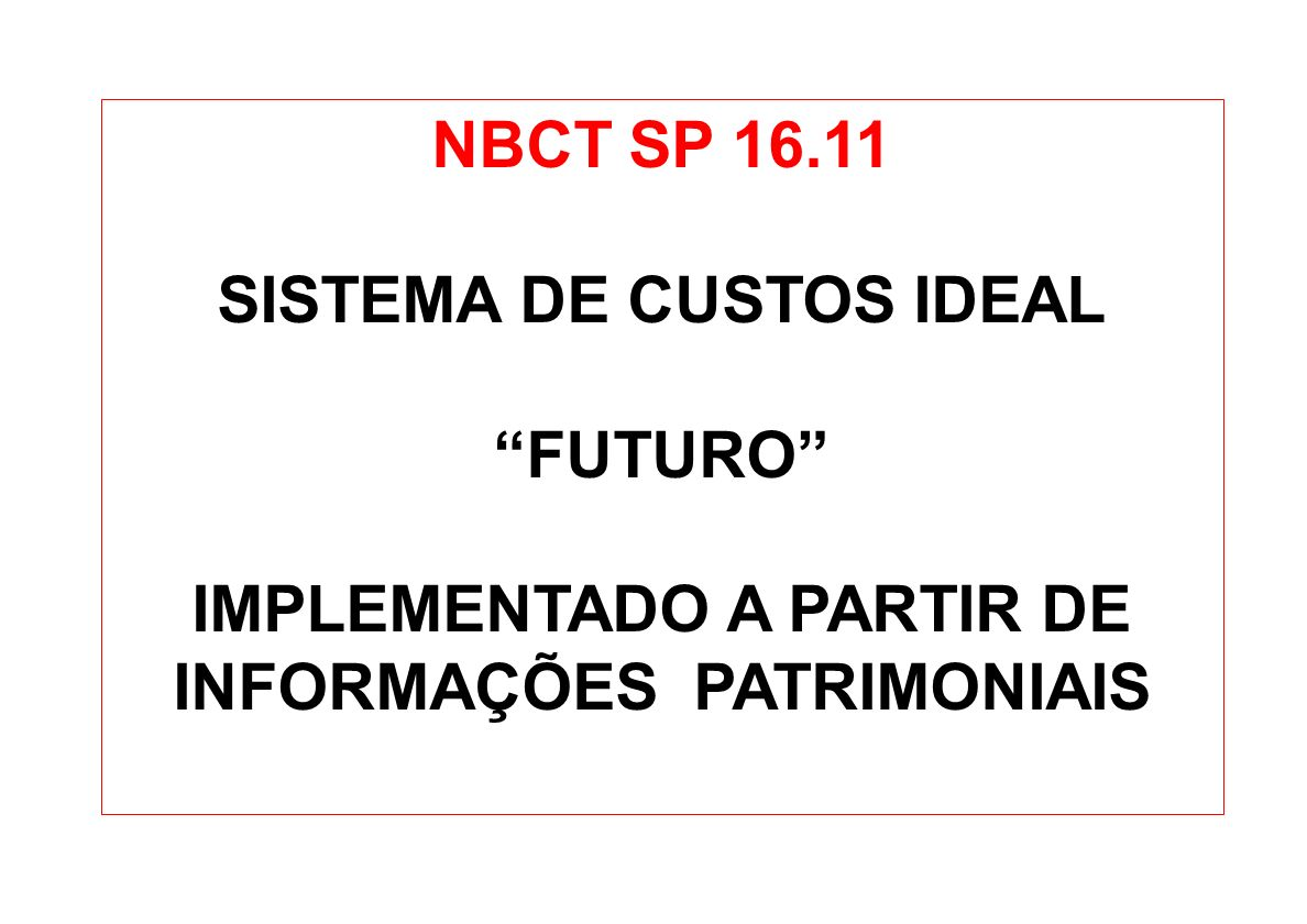 SISTEMA DE CUSTOS IDEAL FUTURO