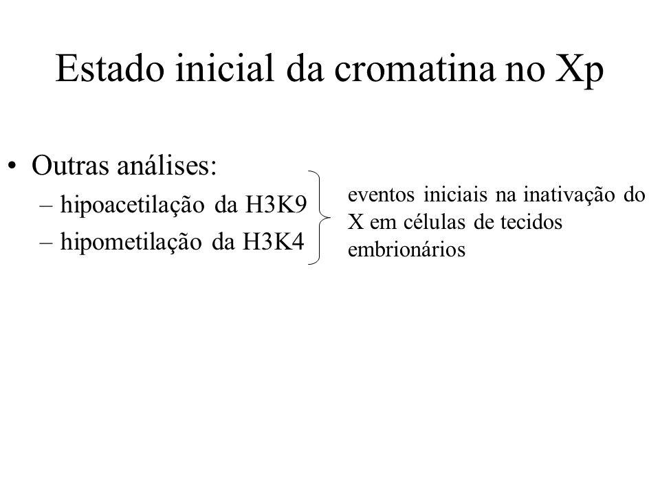 Estado inicial da cromatina no Xp