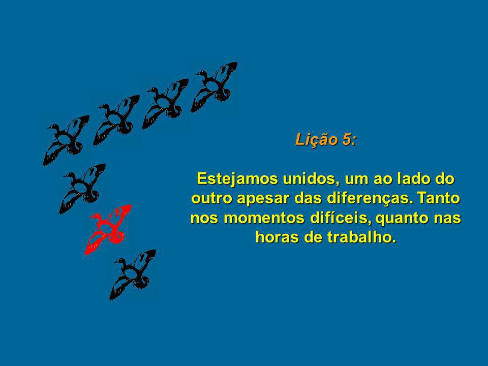 Lição 5: Estejamos unidos, um ao lado do outro apesar das diferenças.