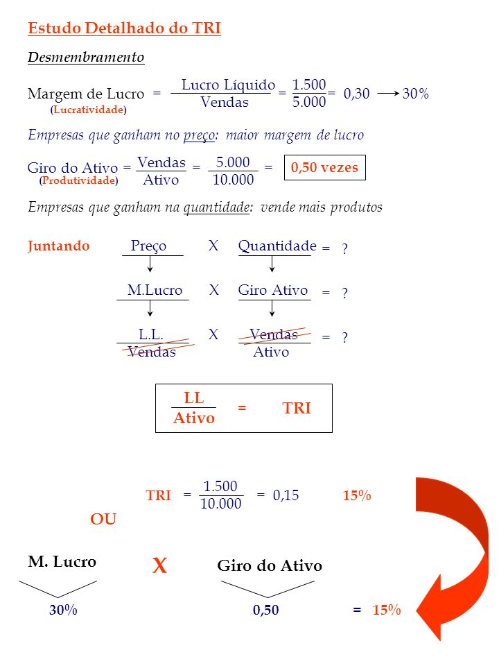 X Estudo Detalhado do TRI LL Ativo TRI OU M. Lucro Giro do Ativo