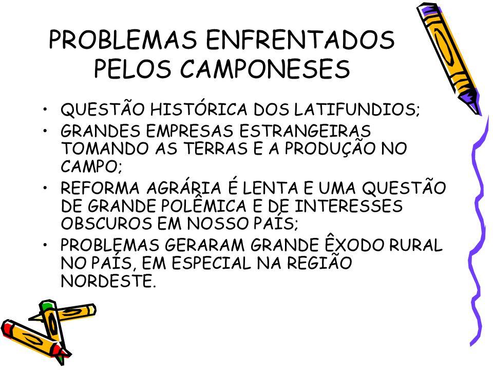 PROBLEMAS ENFRENTADOS PELOS CAMPONESES