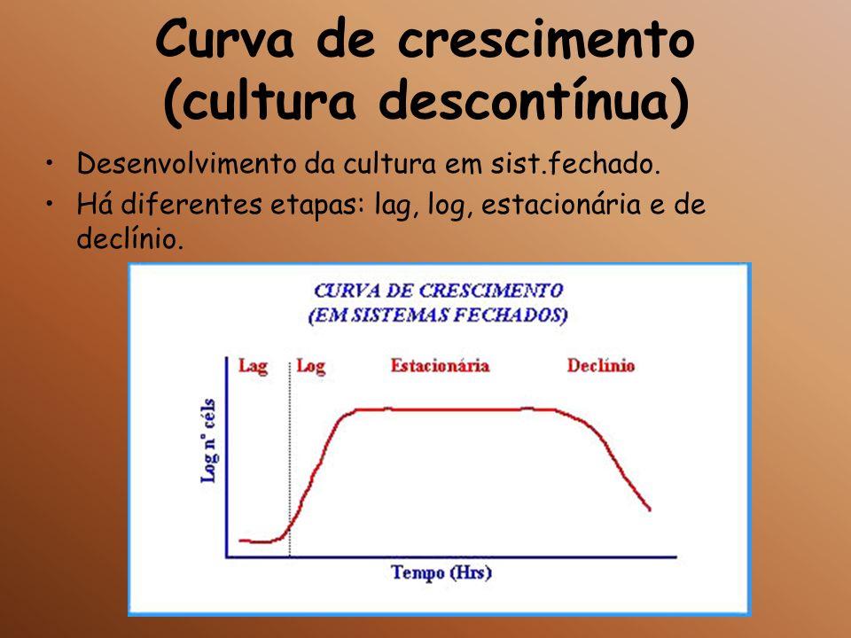 Curva de crescimento (cultura descontínua)