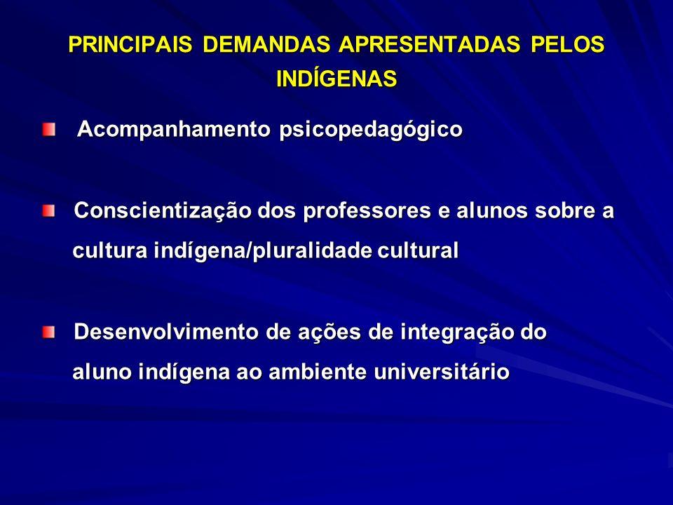 PRINCIPAIS DEMANDAS APRESENTADAS PELOS INDÍGENAS