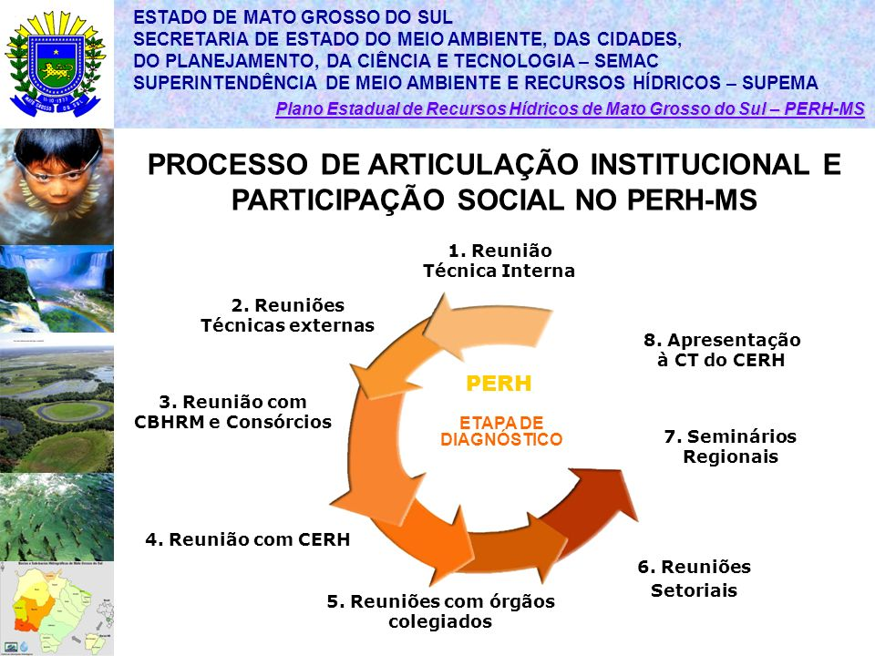 PROCESSO DE ARTICULAÇÃO INSTITUCIONAL E PARTICIPAÇÃO SOCIAL NO PERH-MS