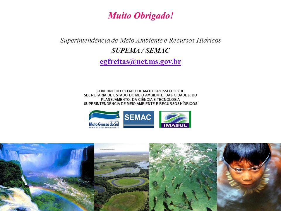 Superintendência de Meio Ambiente e Recursos Hídricos