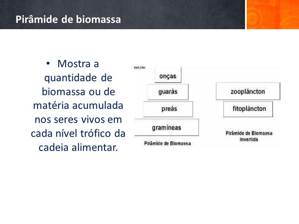 Pirâmide de biomassa Mostra a quantidade de biomassa ou de matéria acumulada nos seres vivos em cada nível trófico da cadeia alimentar.