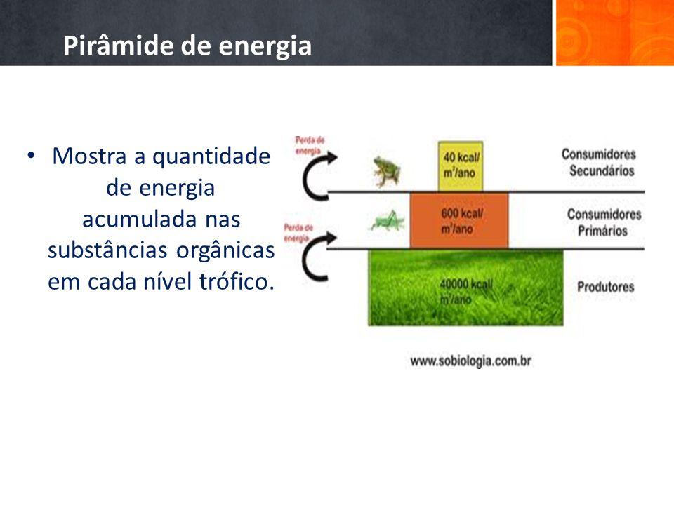 Pirâmide de energia Mostra a quantidade de energia acumulada nas substâncias orgânicas em cada nível trófico.