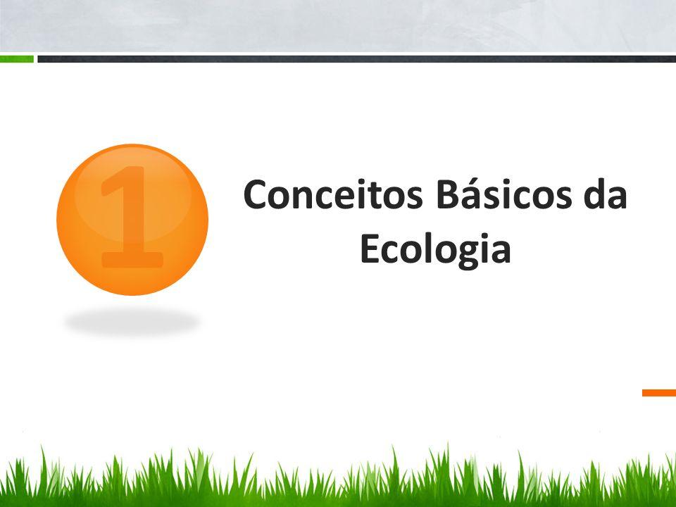 Conceitos Básicos da Ecologia