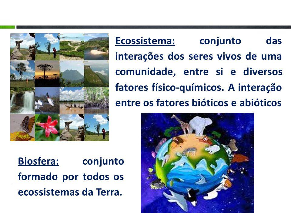 Ecossistema: conjunto das interações dos seres vivos de uma comunidade, entre si e diversos fatores físico-químicos. A interação entre os fatores bióticos e abióticos