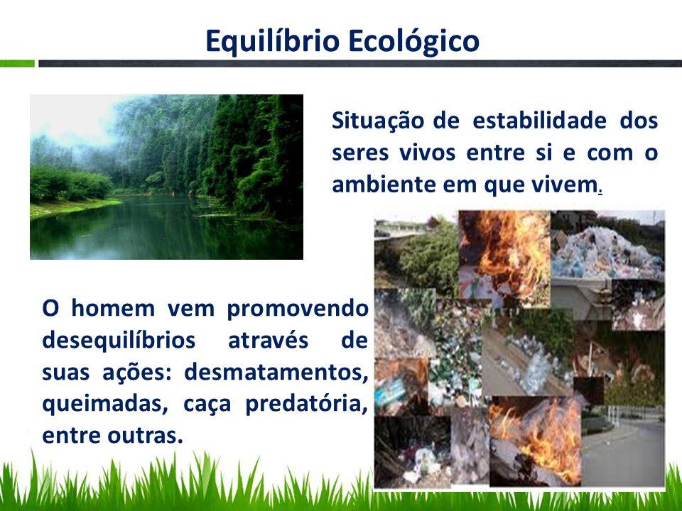 Equilíbrio Ecológico Situação de estabilidade dos seres vivos entre si e com o ambiente em que vivem.
