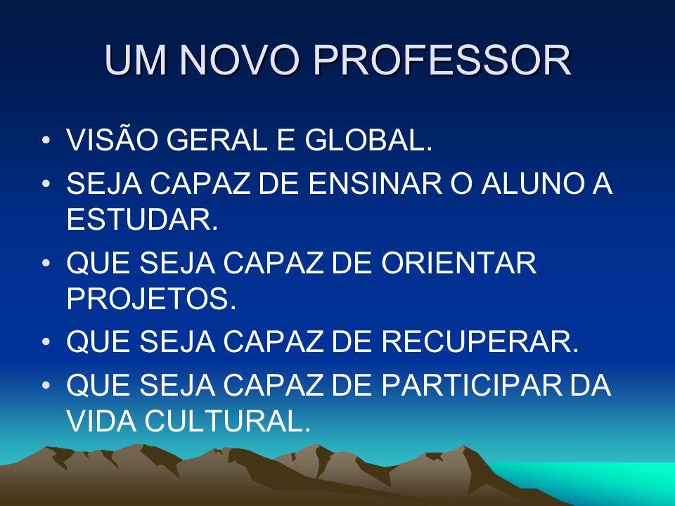 UM NOVO PROFESSOR VISÃO GERAL E GLOBAL.