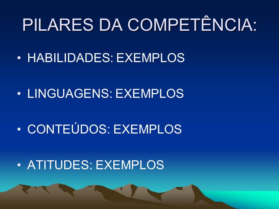 PILARES DA COMPETÊNCIA: