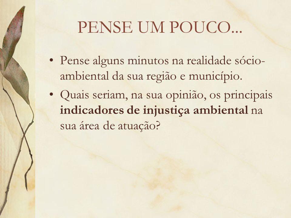 PENSE UM POUCO... Pense alguns minutos na realidade sócio-ambiental da sua região e município.