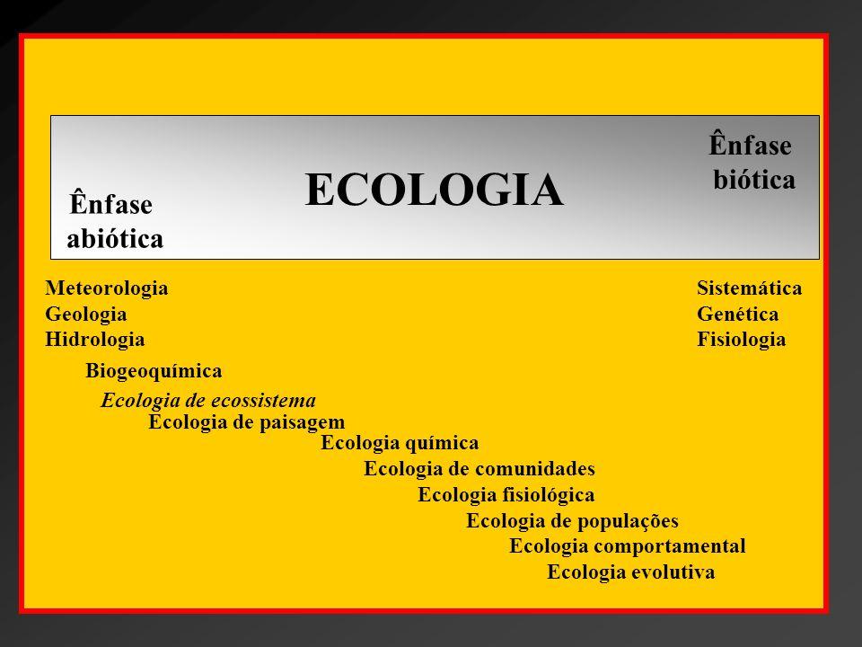 Ecologia de ecossistema