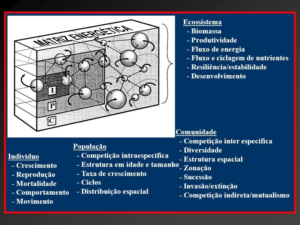 Ecossistema- Biomassa. - Produtividade. - Fluxo de energia. - Fluxo e ciclagem de nutrientes. - Resiliência/estabilidade.