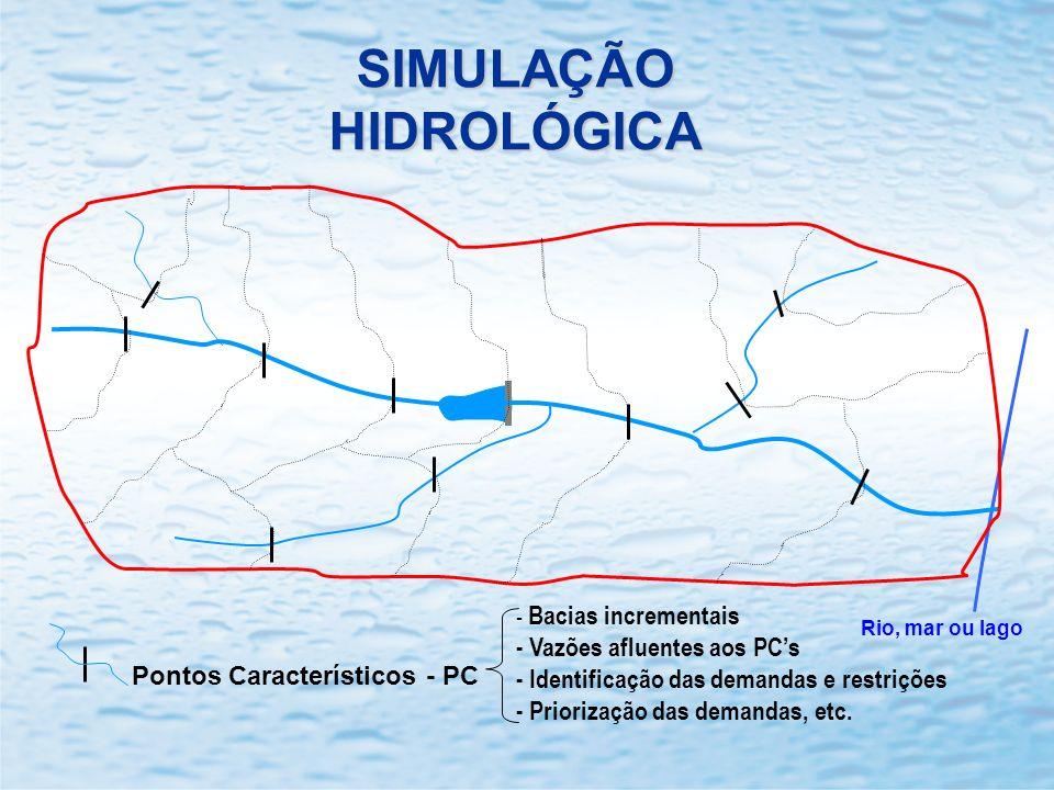 SIMULAÇÃO HIDROLÓGICA