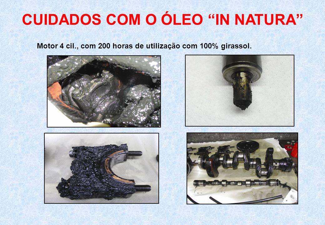 CUIDADOS COM O ÓLEO IN NATURA