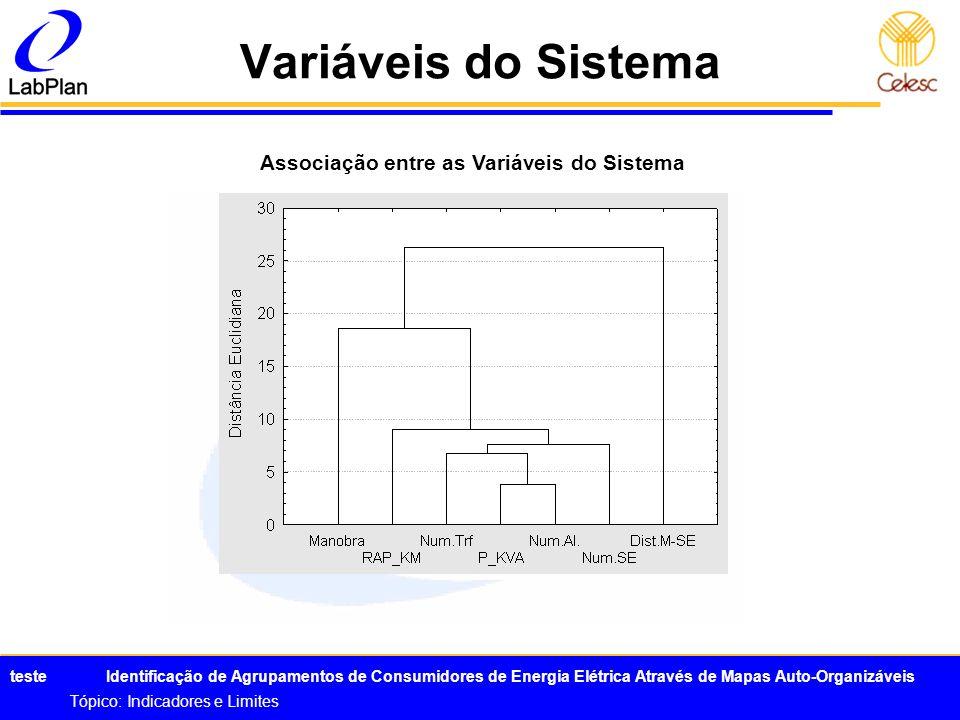 Associação entre as Variáveis do Sistema