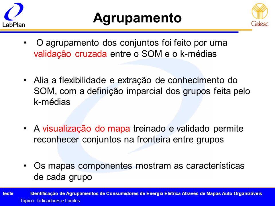 AgrupamentoO agrupamento dos conjuntos foi feito por uma validação cruzada entre o SOM e o k-médias.