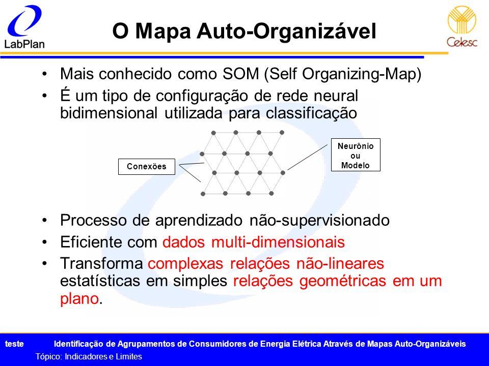 O Mapa Auto-Organizável