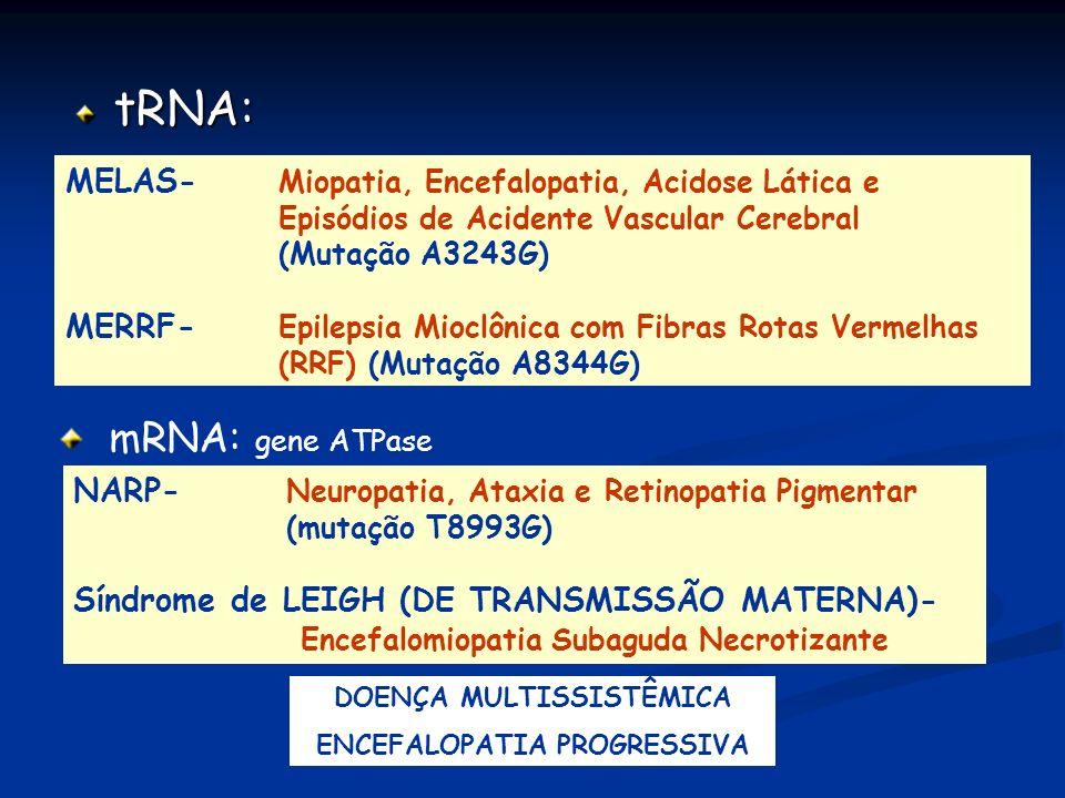 DOENÇA MULTISSISTÊMICA ENCEFALOPATIA PROGRESSIVA