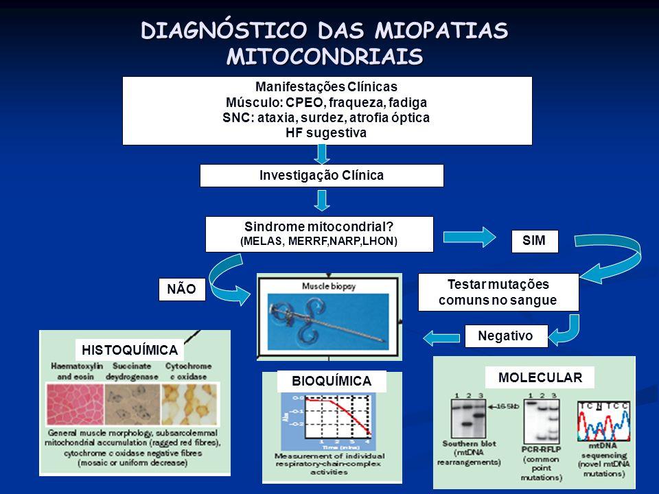 DIAGNÓSTICO DAS MIOPATIAS MITOCONDRIAIS
