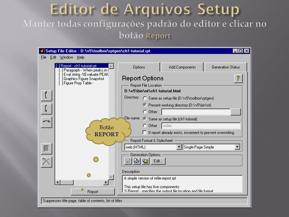 Editor de Arquivos Setup Manter todas configurações padrão do editor e clicar no botão Report