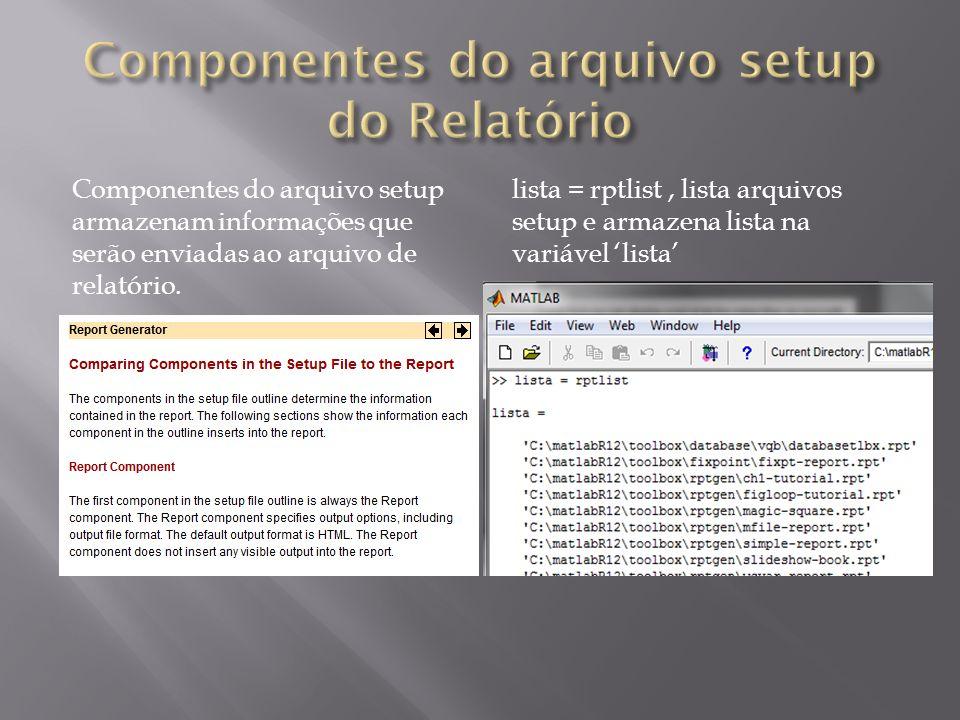 Componentes do arquivo setup do Relatório